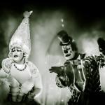 Dos palcos do Cirque du Soleil para Foz do Iguaçu