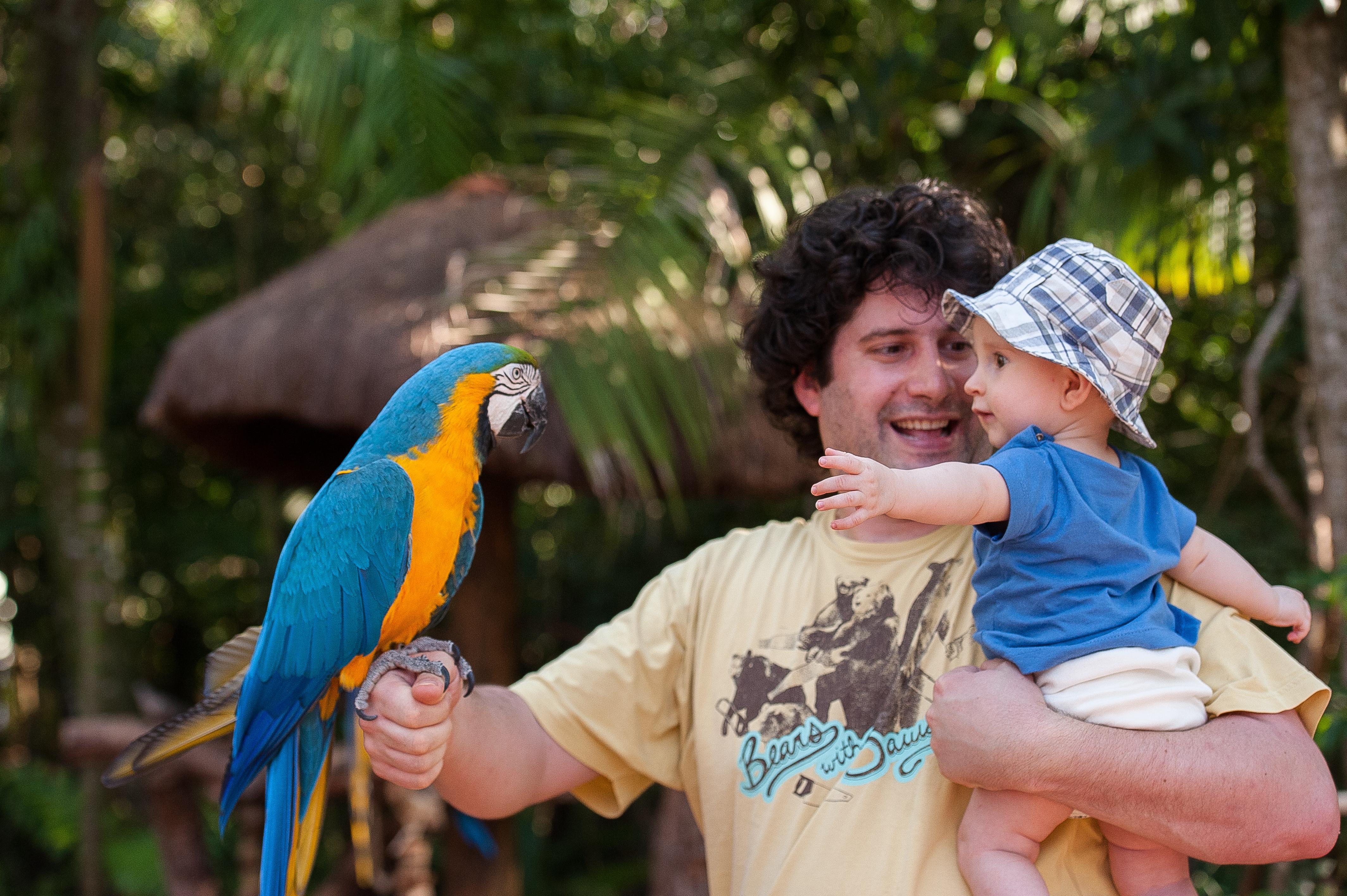 preço da entrada parque das aves (2)