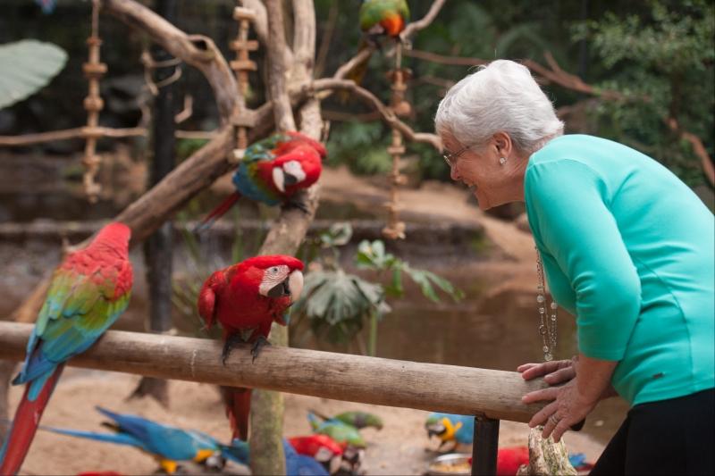 Foto: Parque das Aves